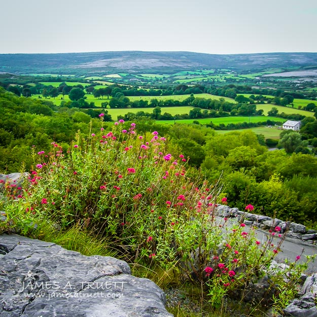 Burren National Park's Lovely Vistas