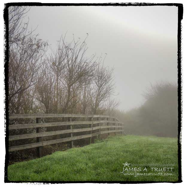 A fence in the Irish morning fog