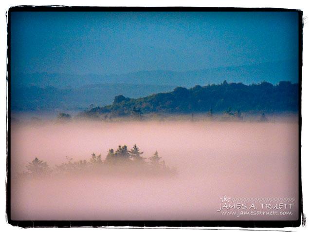 Morning Irish Fog