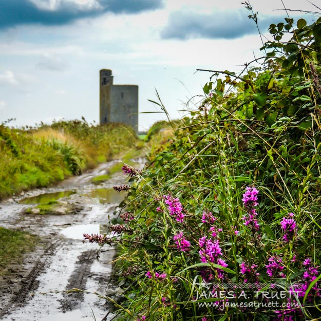 This rain-drenched, mud-laden path leads to the ruins of the Medieval tower house known as Tromra Castle near Quilty in County Clare, Ireland.
