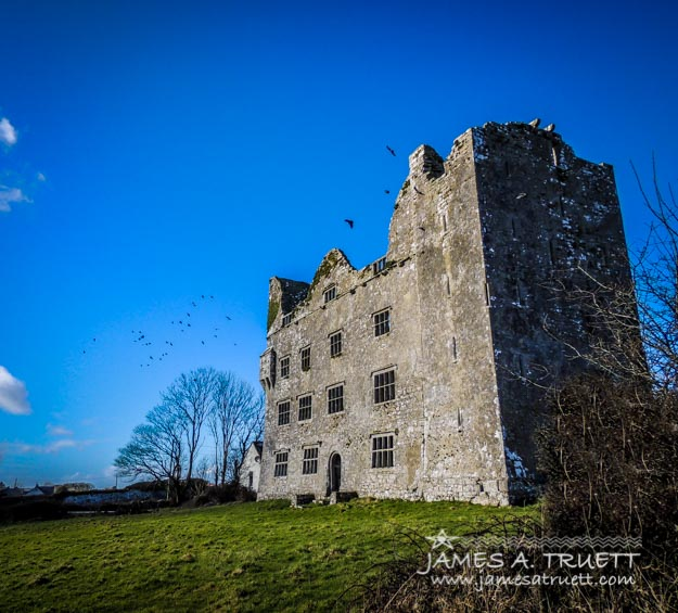 Birds of Ireland's Leamaneh Castle