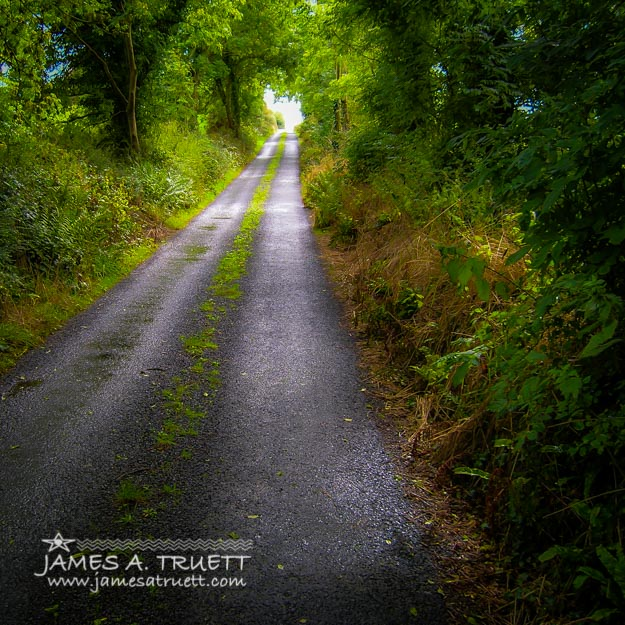 Irish Country Road in Summer.