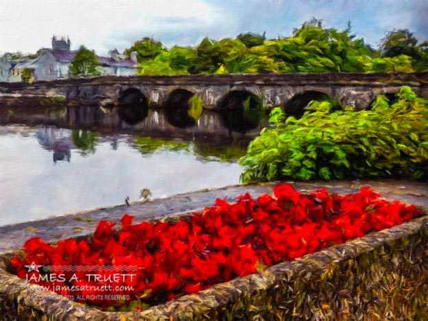 Flowers on the waterfront at Roosky, County Roscommon