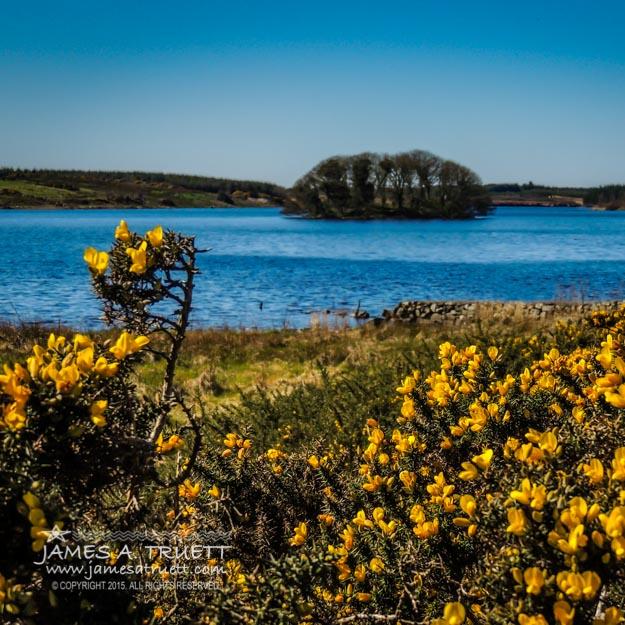 Springtime on Lake Knockalough