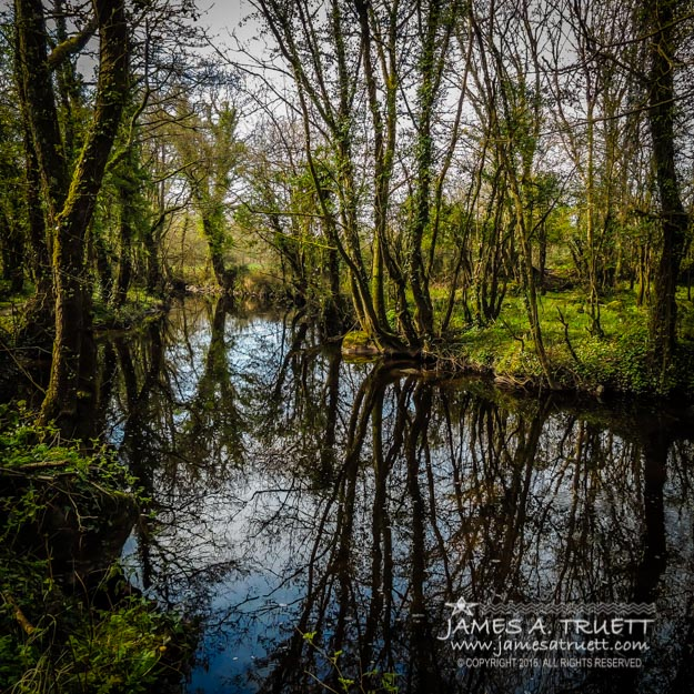 Reflections at Yeats Thoor Ballylee