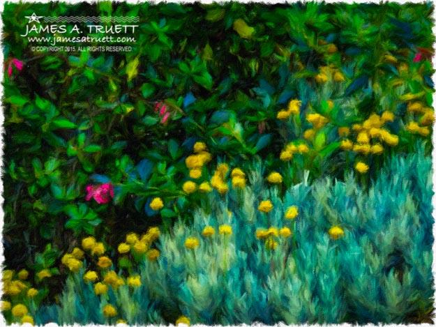 Colorful Irish Landscape