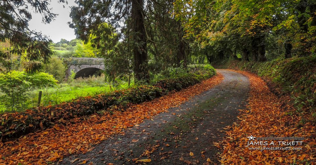 Autumn Scene - Clondegad Bridge, County Clare